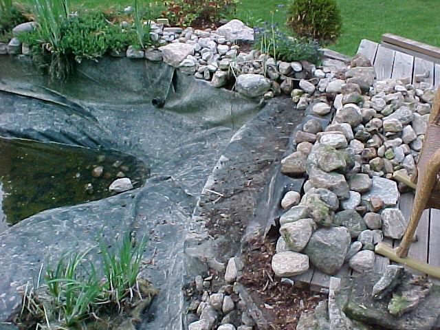 Edging ideas for Pond edging ideas