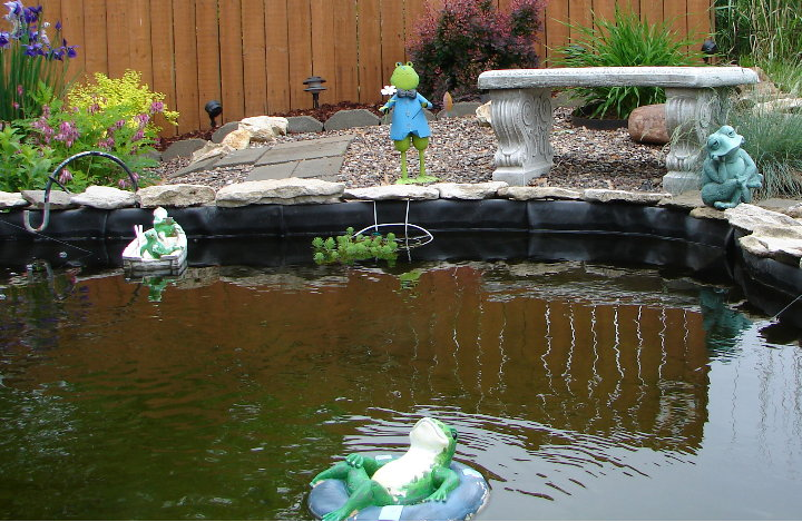 Okay Here Is A Picture Of The Pond Liner That Hubby Wants