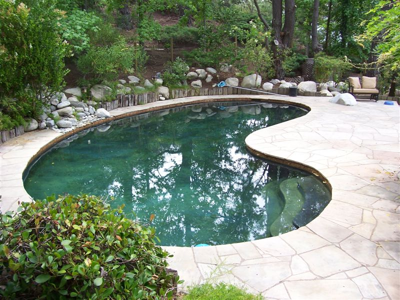 Pool to pond conversion for Swimming pool conversion