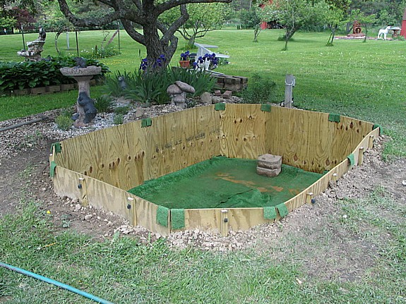 New goldfish pond for Goldfish pond pump