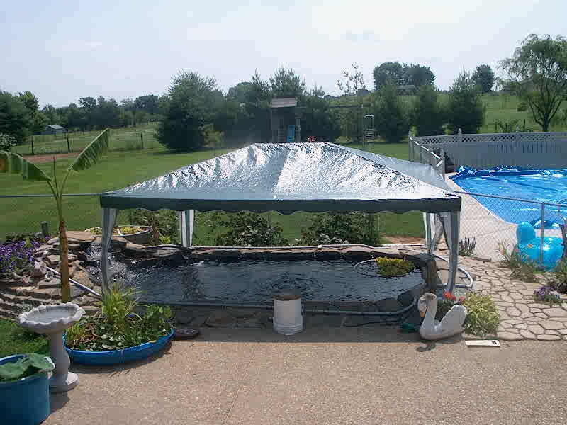 show us your pond toppers shade ideas