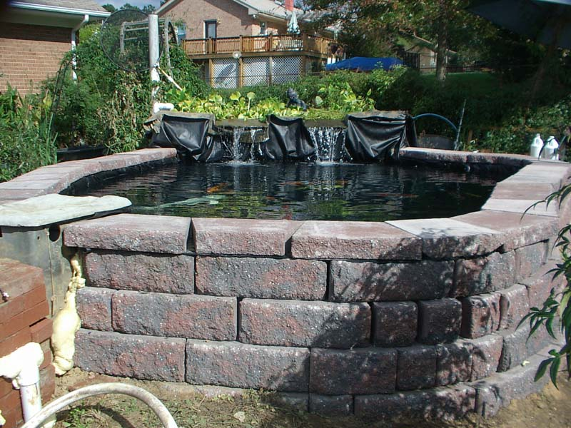 Allen block for Building a koi pond with concrete block