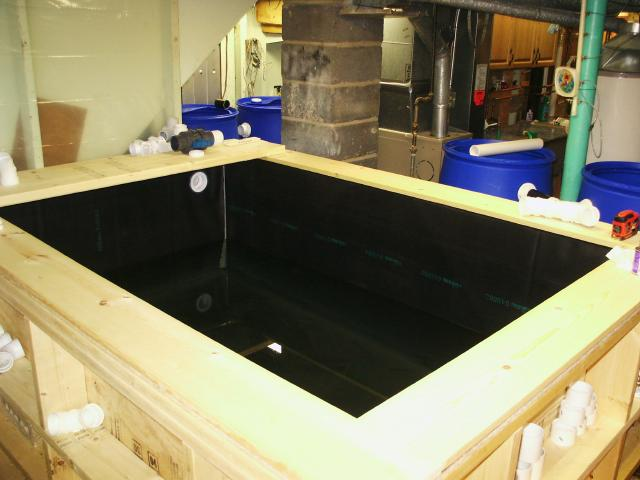 Indoor Pond Help