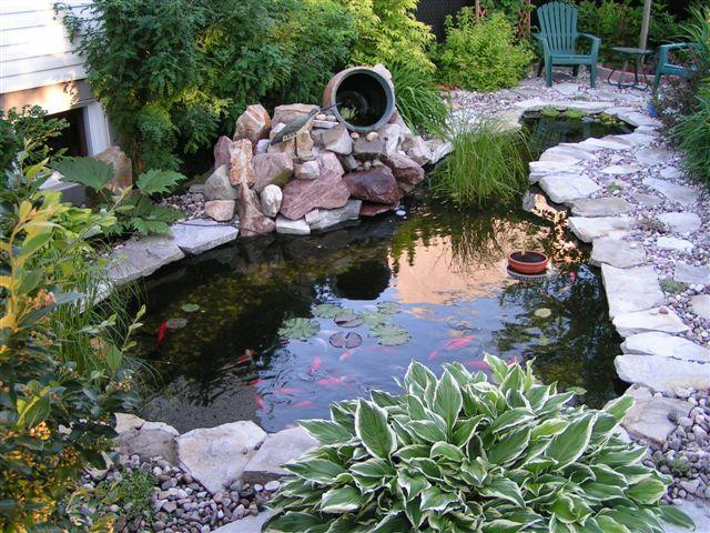 Our koi and ponds page 2 for Salt in koi pond