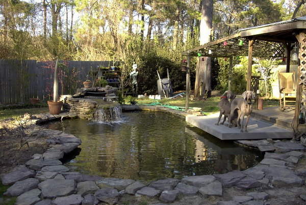 How much to build a nice 3 500 gallon koi pond for How much to build a koi pond