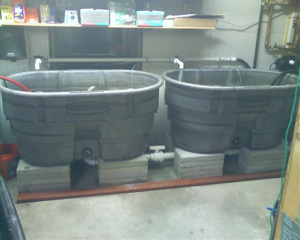 Two 100 Gallon Tanks Gravity Feed To Barrel