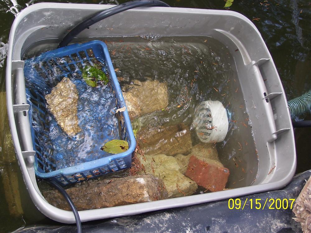 Diy pond skimmer diy projects for Koi pond skimmer