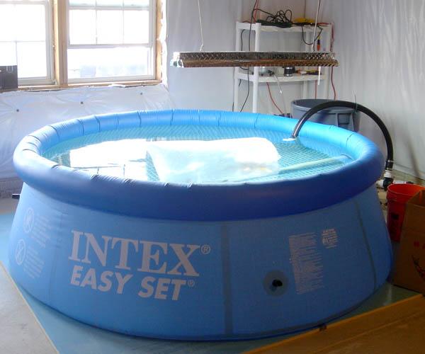 Indoor koi pool for Koi show pools