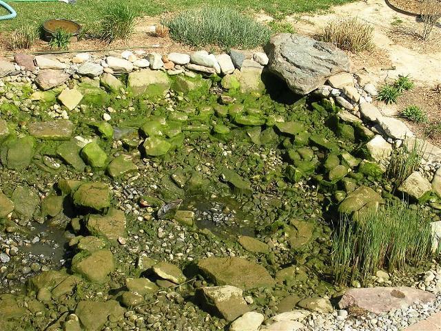 Worldwide koi club why most koiphen members discourage for Koi pond rocks