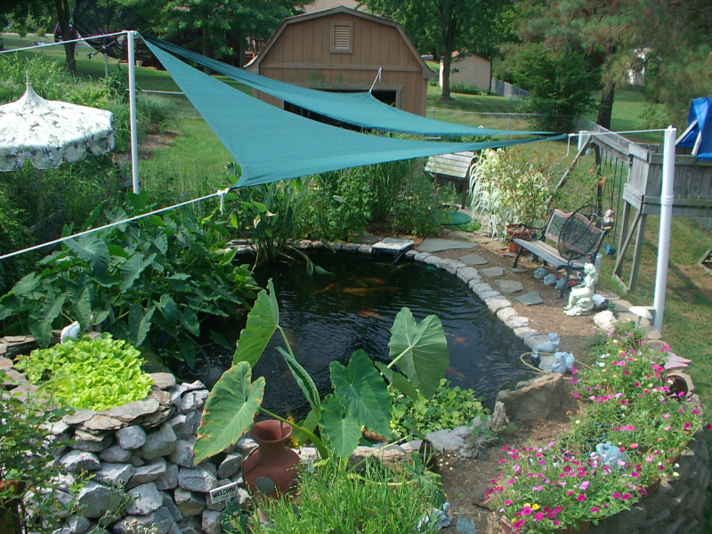 Shade sails for Koi pond shade ideas
