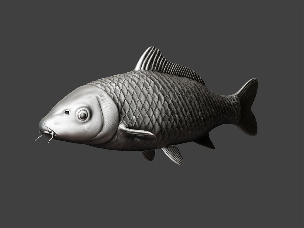 3d koi model help for Koi fish scales