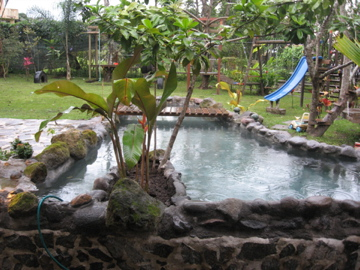 Natural swimming pond fish pond for Koi pond natural swimming pool