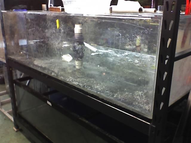 220 gallon aquarium for 220 gallon fish tank