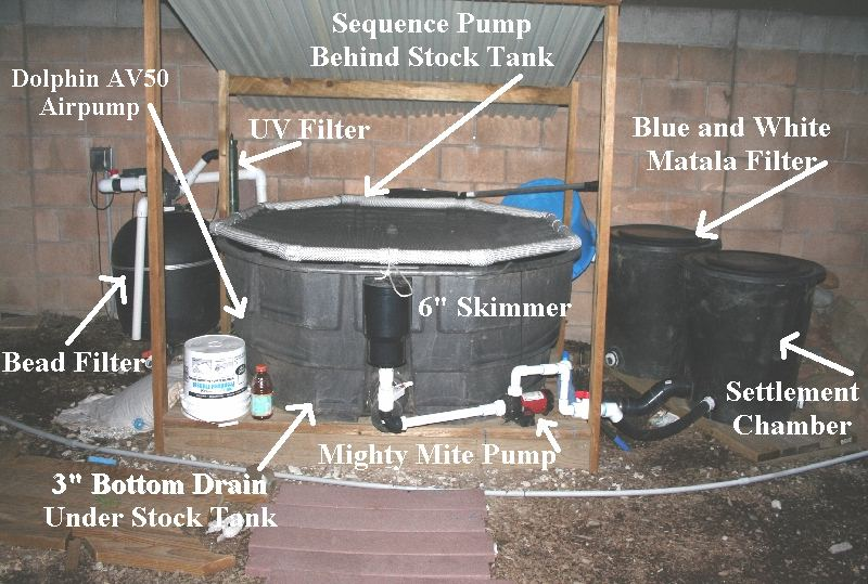 Diy filter for 300 gallon stock tank for fancy fingerlings - How to filter a stock tank swimming pool ...