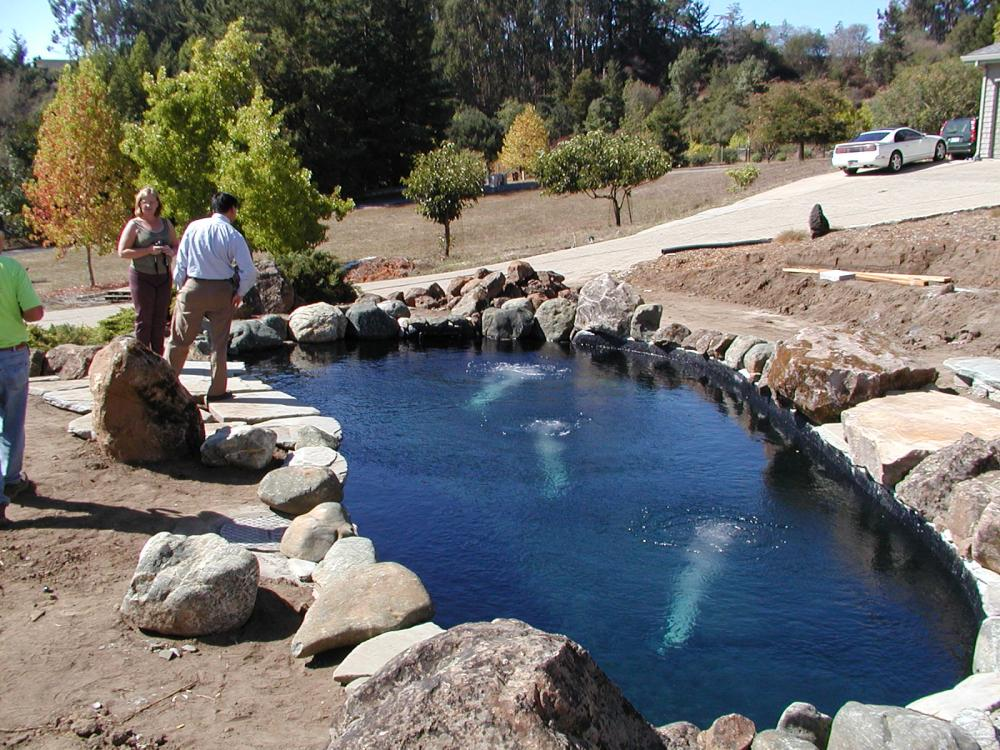 how to build a koi pond with concrete