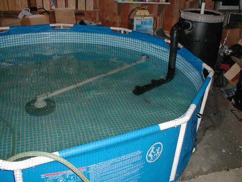 Free air for Koi intex pool