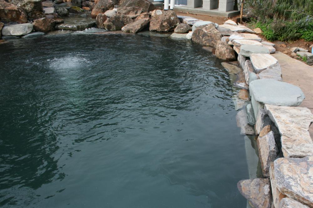 Pool epoxy for koi pond for Koi show pools