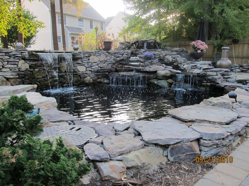 Pond netting ideas for Fish pond cover ideas