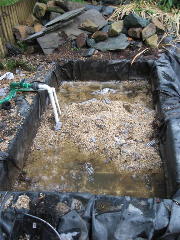 Bog or veggie filter anyone for Pond gravel filter design