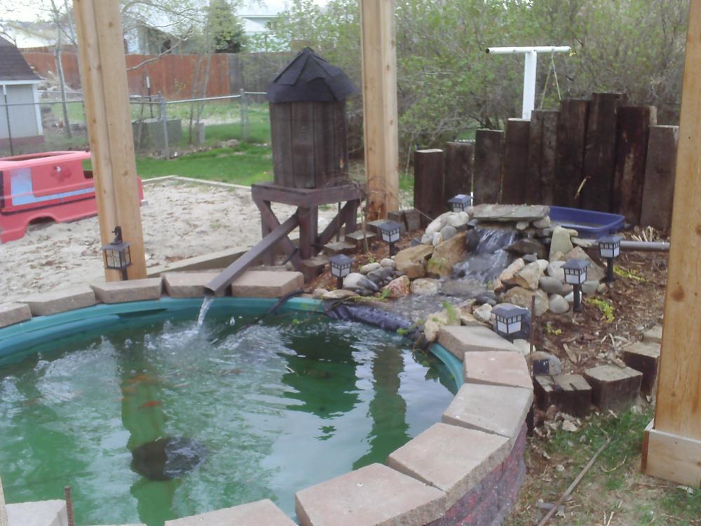 1000 gallon pond redo for Koi pond gallons