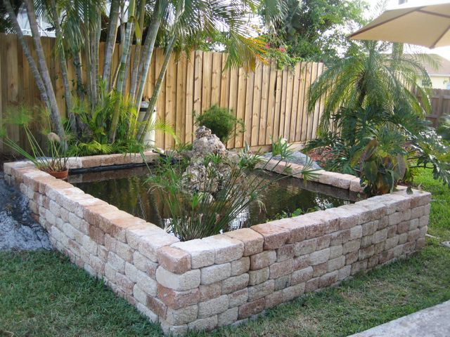 Katie 39 s next final pond for Koi pond price