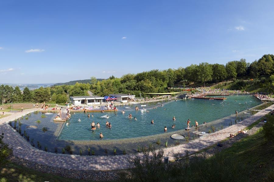 Natural swim pond 1 for the grandkids 2 for for Koi zone pond aquatics
