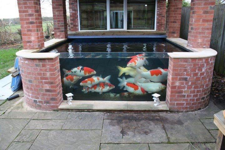 Pond Window For A Gunite Plastered Pond