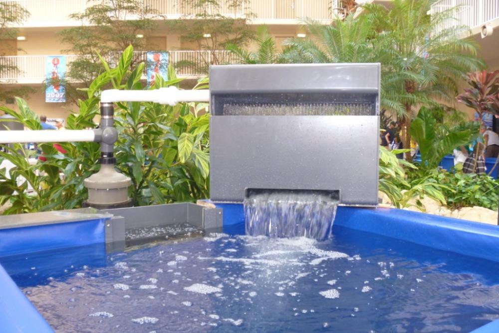 Orlando koi show for Fish pond filtration setup