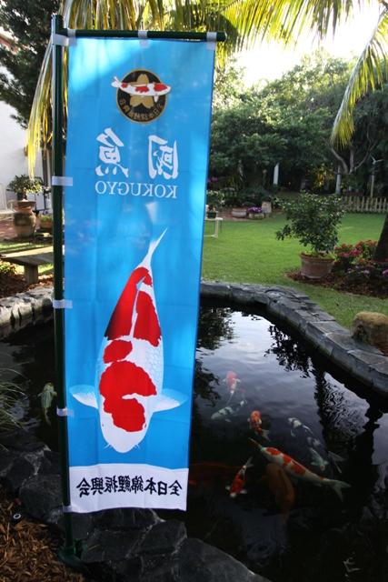 New koi flag for Japanese flag koi