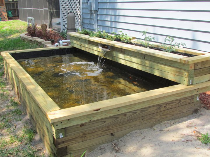 Ideas For On Ground Temporary Pond