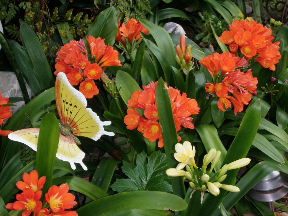 Spring flowers mightylinksfo