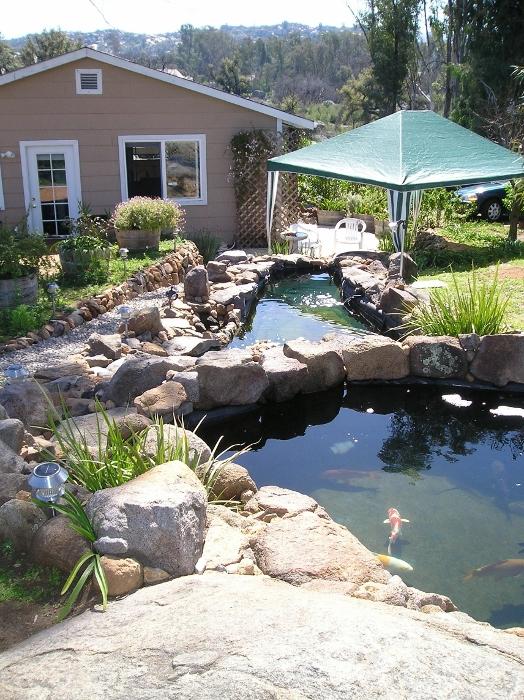 Thread: Jeff Speck's 5000-gallon fiberglass pool