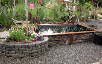Koi pond fantasy for Koi pond construction cost