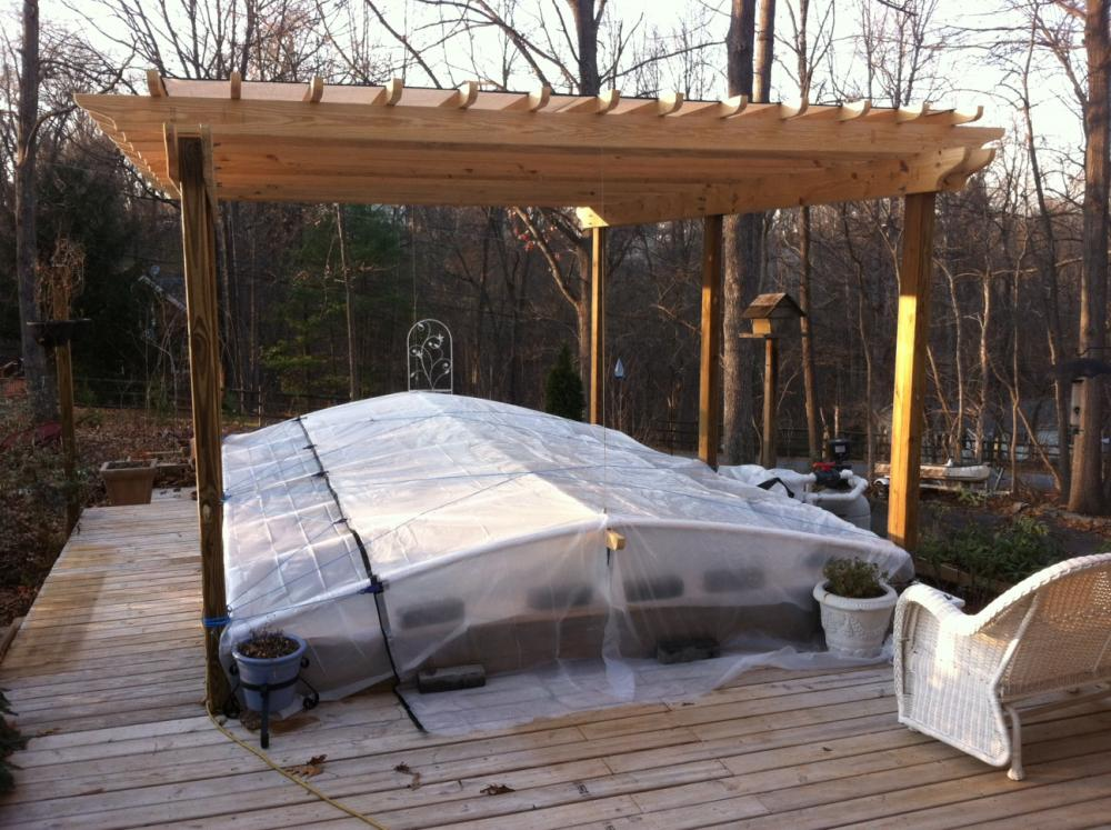 Winter cover up for Koi pool cover