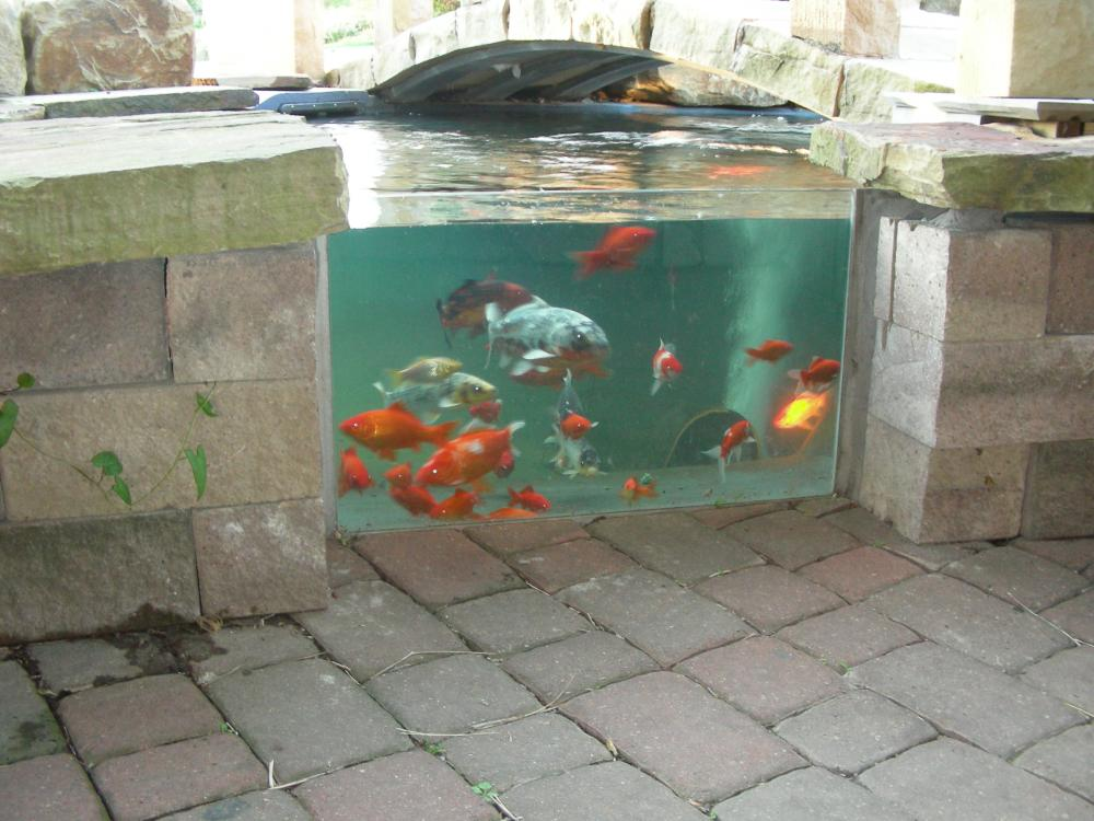 Attaching glass to a fiberglass pond for Koi pond window
