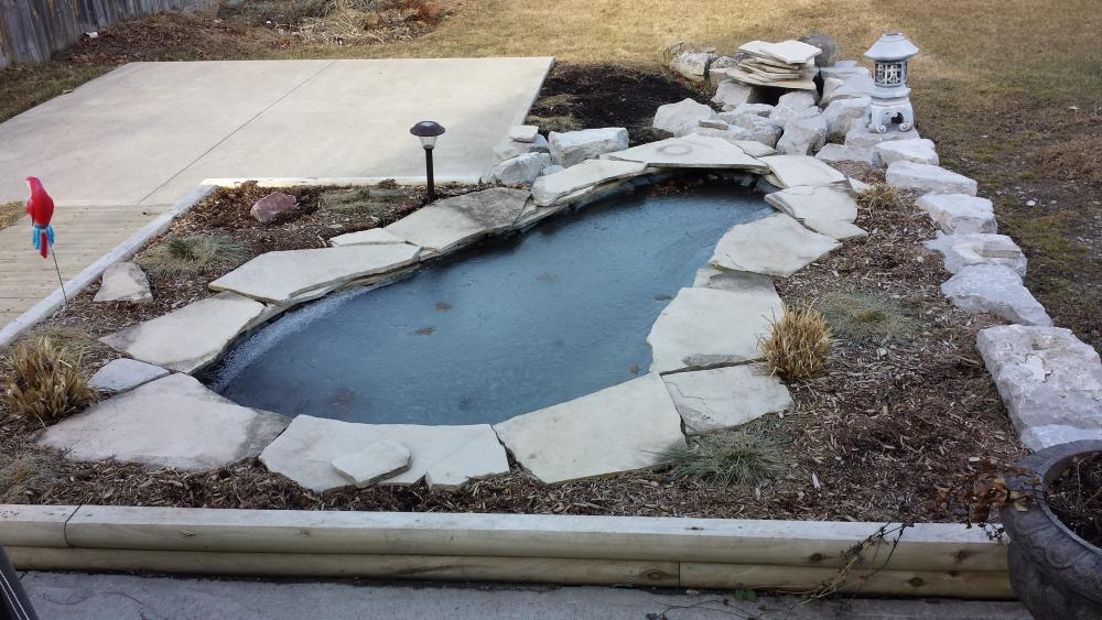 From a1200 to around 5000 gallon koi pond construction for Koi pond gallons