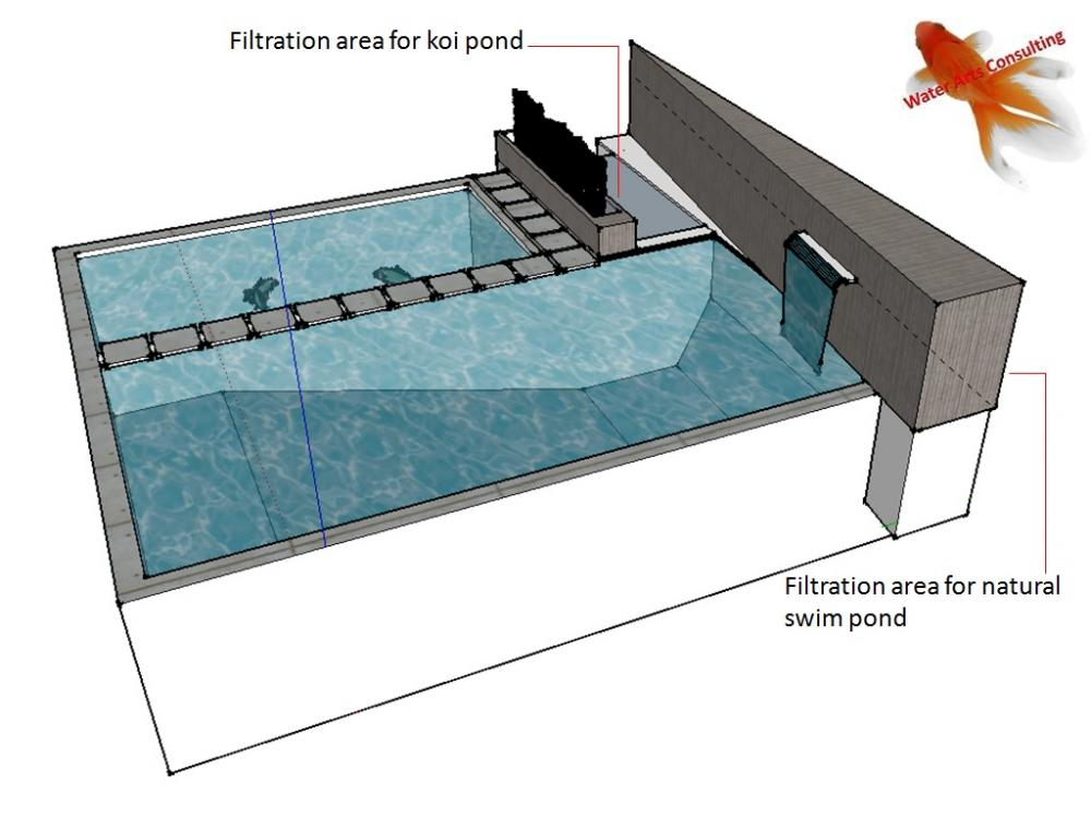 Swimming pool with koi pond ideas needed for Koi pond filtration design