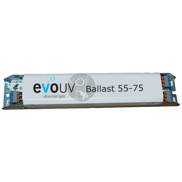 Name:  EvoBallast.jpg