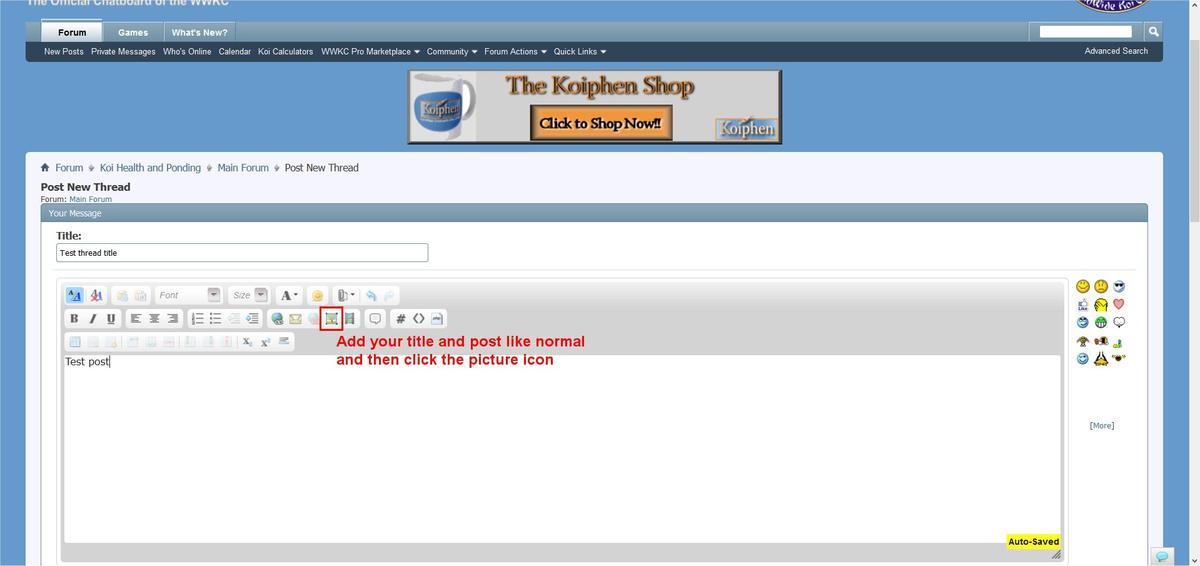 Name:  Image2.jpg Views: 1003 Size:  52.2 KB