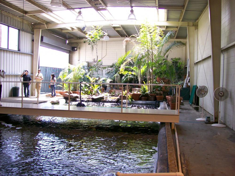 40 000 Gallon Indoor Pond