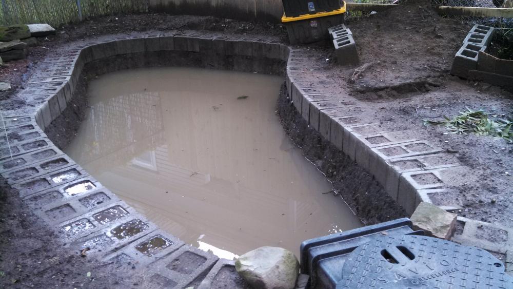 Name:  pond 2012 full water.jpg Views: 118 Size:  95.4 KB