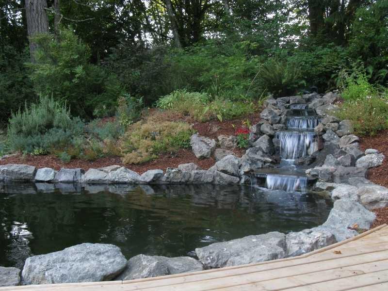 Name:  pond2.jpg Views: 121 Size:  97.0 KB