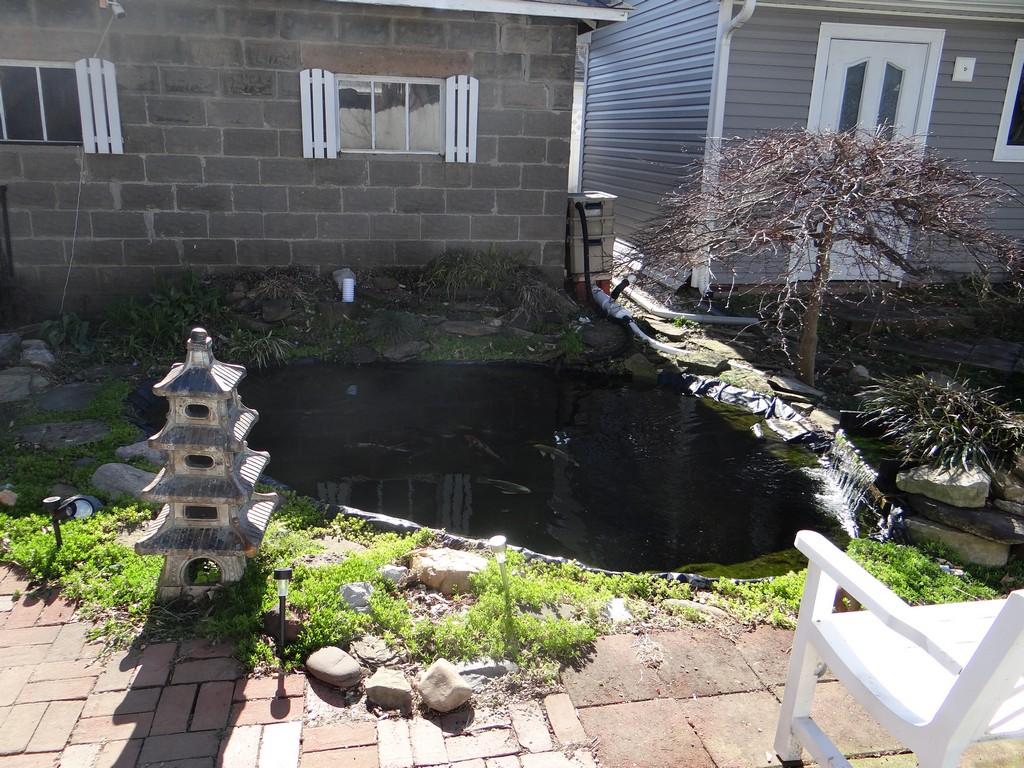 Name:  Pond-site-r 05.jpg Views: 1299 Size:  327.0 KB