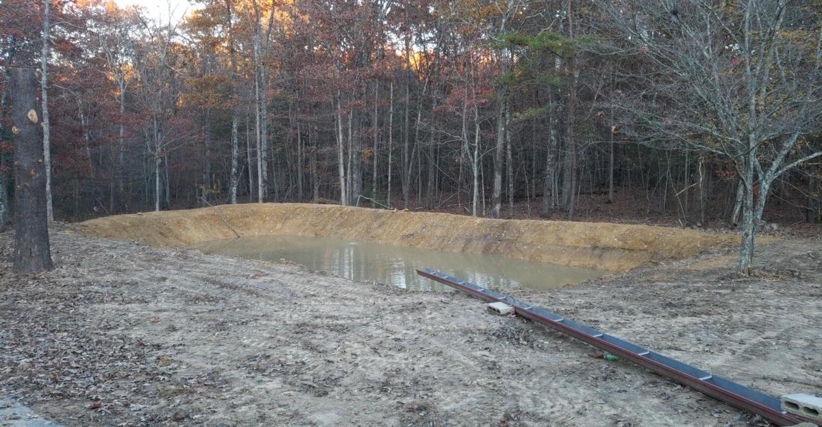 Name:  pond.jpg Views: 294 Size:  167.2 KB