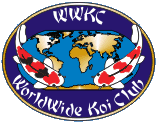 WWKC Logo